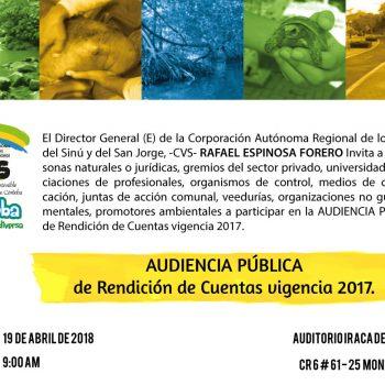 Invitacion-Audiencia-Publica-Vig-2017