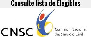 logo_Cnsc_cvs