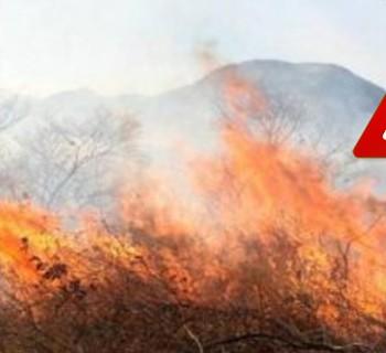 alerta_incendios